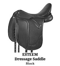 Esteem Dressage Saddle