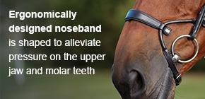 Ergonomically designed nodeband is shaped to alleviate pressure on the upper jaw and molar teeth