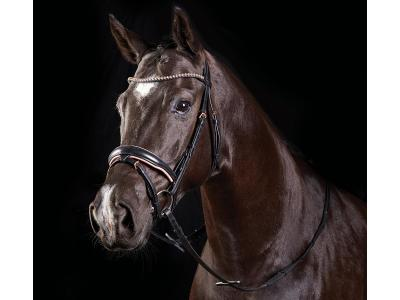 Collegiate Rose Gold Crystal Flash Bridle Black